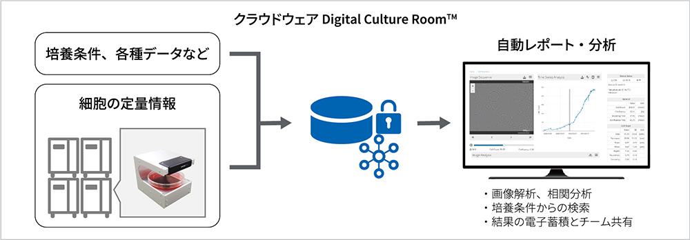 Digital Culture Room